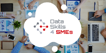 DataSkills4SMEs Banner